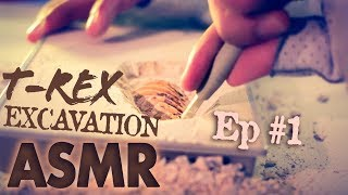 ASMR Relaxing Binaural Sound Triggers of Dinosaur excavation clay. ...