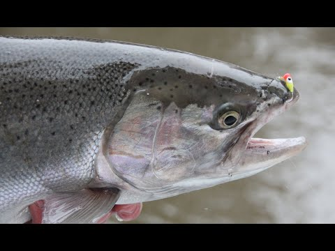 Introduction to Float Fishing Concepts Part 1