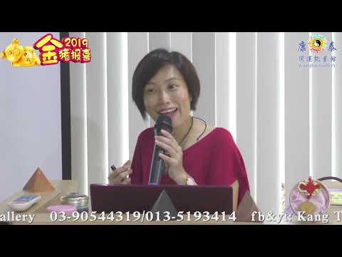 康泰2019生肖運程【龙】(粤)