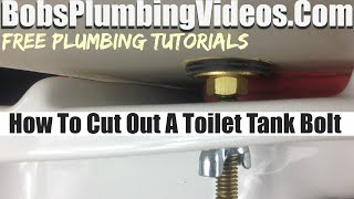 Toilet Tank Bolts Leaking - How To Cut Off The Bolts
