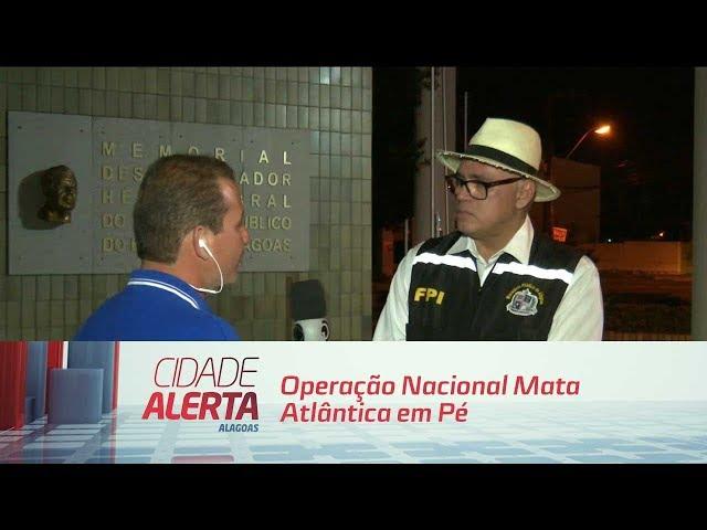 ''Operação Nacional Mata Atlântica em Pé'': 17 estados brasileiros tiveram ações