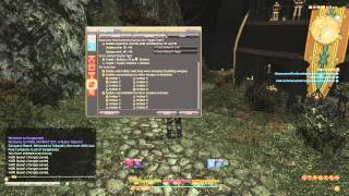 FFXIV ARR: Knowing Your UI - Hotbar Settings