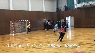 ハンドボール2019 埼玉県総合選手権女子準決勝 三郷OG vs 駿河台大