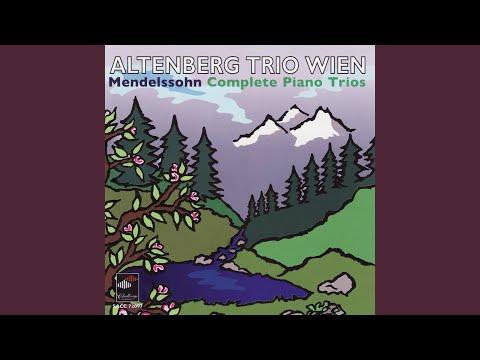 Trio For Piano, Violin And Violoncello No.1 In D Minor, Op. 49.: Molto Allegro Agitato