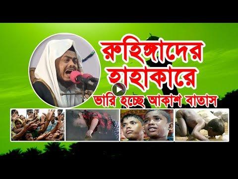 রুহিঙ্গা মুসলিমদের কি দোষ ? নতুন ওয়াজ Bangla Waz Mahfil
