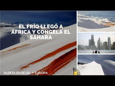 Fotos y videos: El frío llegó a África y congela el Sáhara sigue alerta en EE.UU.