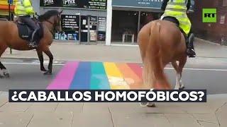 Caballos policía se asustan al ver la bandera LGTB