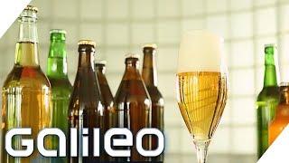 Ist Bier wirklich das Lieblingsgetränk der Deutschen   Galileo   ProSieben