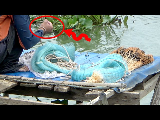 What is he caught using his net?