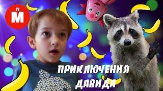 ВОЛШЕБНЫЙ ЕНОТ МИСТЕР МАКС ОЖИВАЕТ Лунтик все серии подряд ДАВИД ЛУНТИК И ЕНОТ Видео для детей