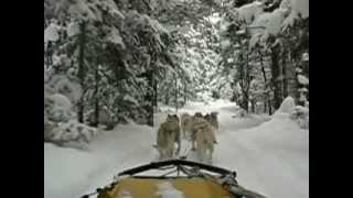 Winter Activities near Beauview Cottages, Muskoka