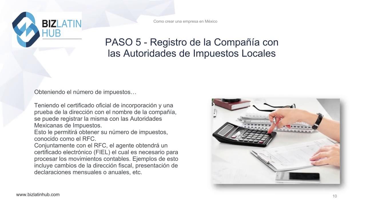 Diferentes Tipos De Empresas Entidades Legales En México