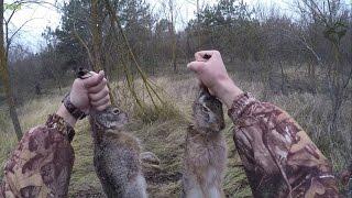 ОХОТА НА ЗАЙЦА  ##НОВИНКА## Добыли два зайца в лесополосе.  GoPro HERO 4