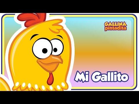 Mi Gallito - Gallina Pintadita 2 - Oficial - Canciones infantiles para niños y bebés