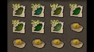 I can't get enough of this place! (HCIM)