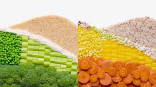 Royal Umbrella Healthy Rice TVC