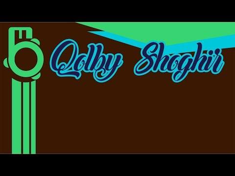 Qolby Shoghir - Karaoke   Lirik Dan Terjemahan