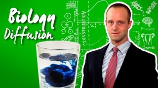 Diffusion - Biology - Science - Get That C In Your GCSE