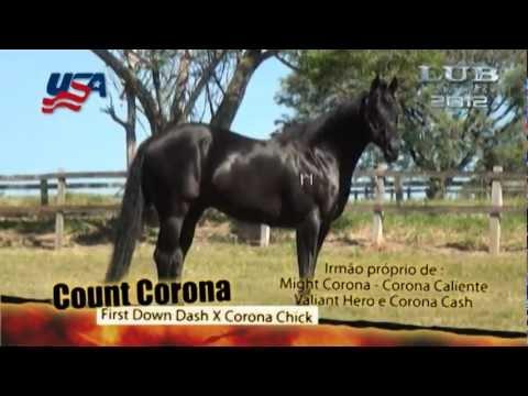 Count Corona Youtube
