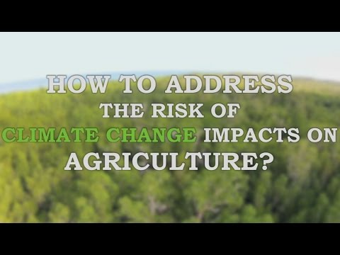 How to address the risk of climate change impacts on agriculture?
