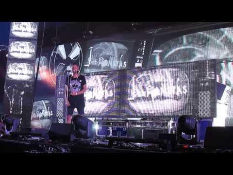 I See MONSTAS Live // Future Music Festival in Melbourne