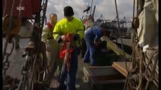 Hapag-Lloyd Azubis helfen im Museumshafen Oevelgönne