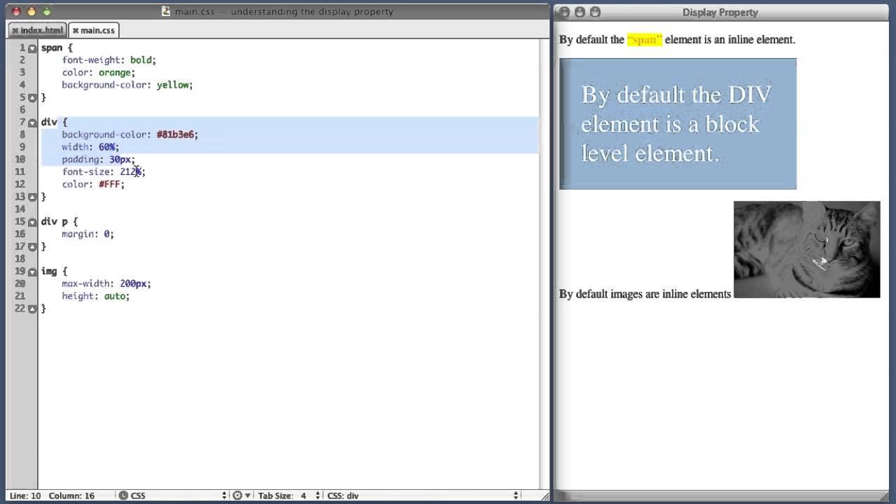 CSS Display Property Tutorial
