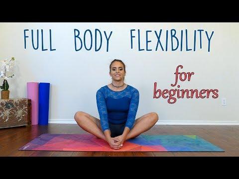 Beginners Flexibility with Nico ♥ Full Body Stretch Warm Up for Dance, Gymnastics, Cheer