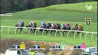 2014 Coolmore Classic - Steps In Time
