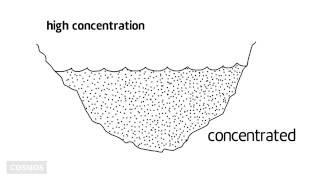 Concentration thumbnail