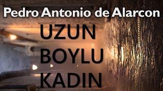 """""""Uzun Boylu Kadın"""" Pedro Antonio de Alarcon sesli kitap tek parça Akın ALTAN"""