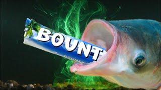 ТОЛСТОЛОБ НА БАУНТИ ! ! !  Рыбалка на баунти ! ! !   fishing  for chocolate bar - bounty