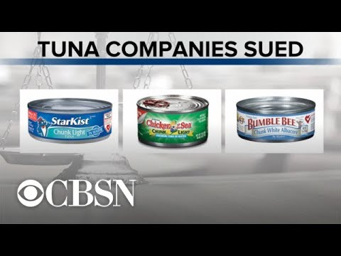 3 U.S. Canned Tuna Companies Sued For Falsely Labeling Products As Dolphin-safe