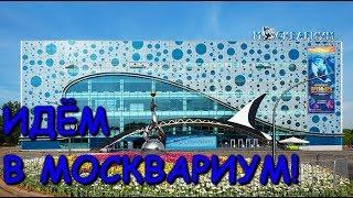 Смотреть видео Куда сходить в Москве? Идём в
