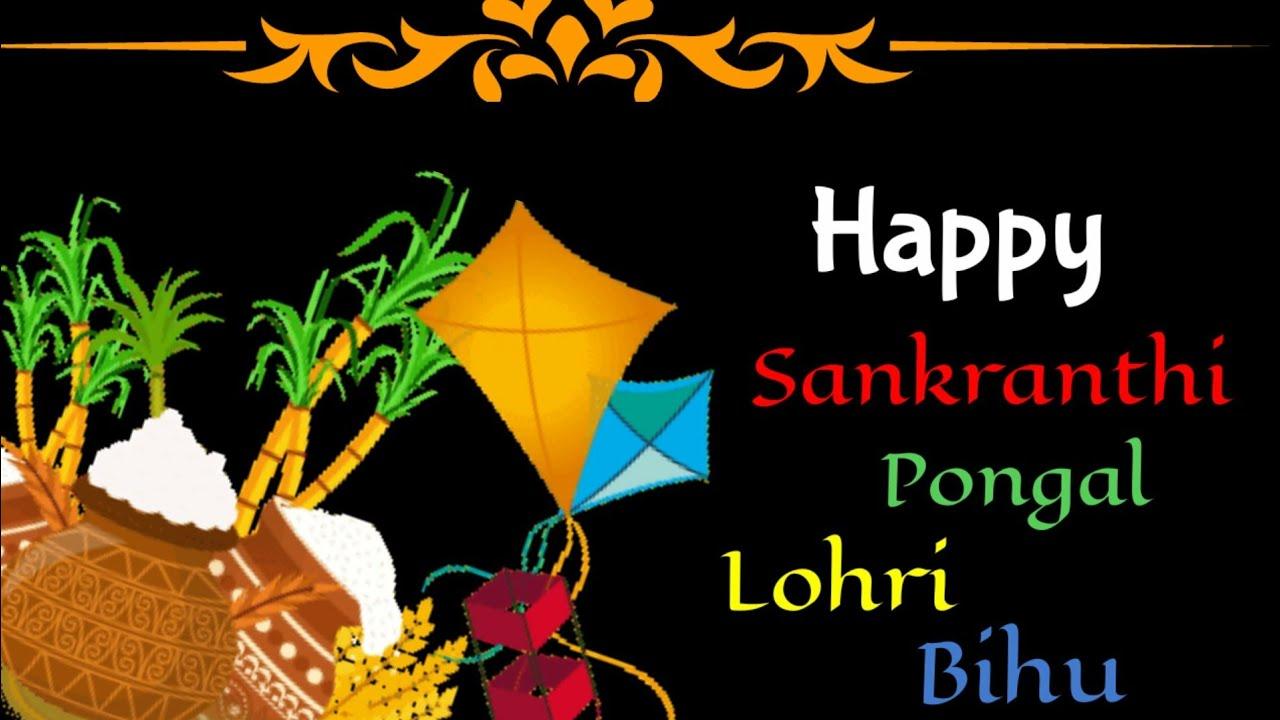 Happy Makar Sankrantipongallohribihuwatsapp Facebook Status
