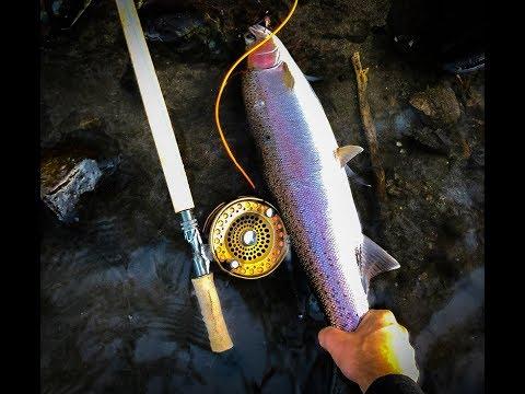 Fishing Report November 6th, 2019 | Ashland Fly Shop