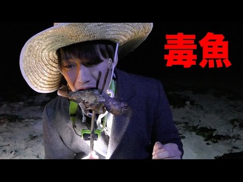 【悲報】カンタ毒魚食べて誕生日にお腹壊す。無人島サバイバル生活2日目