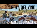Video de Valle de Guadalupe
