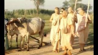 Video We are Thinking We Are Sitting on This Floor but Actually We're Sitting in Krishna - Prabhupada 0680 download MP3, 3GP, MP4, WEBM, AVI, FLV Oktober 2018
