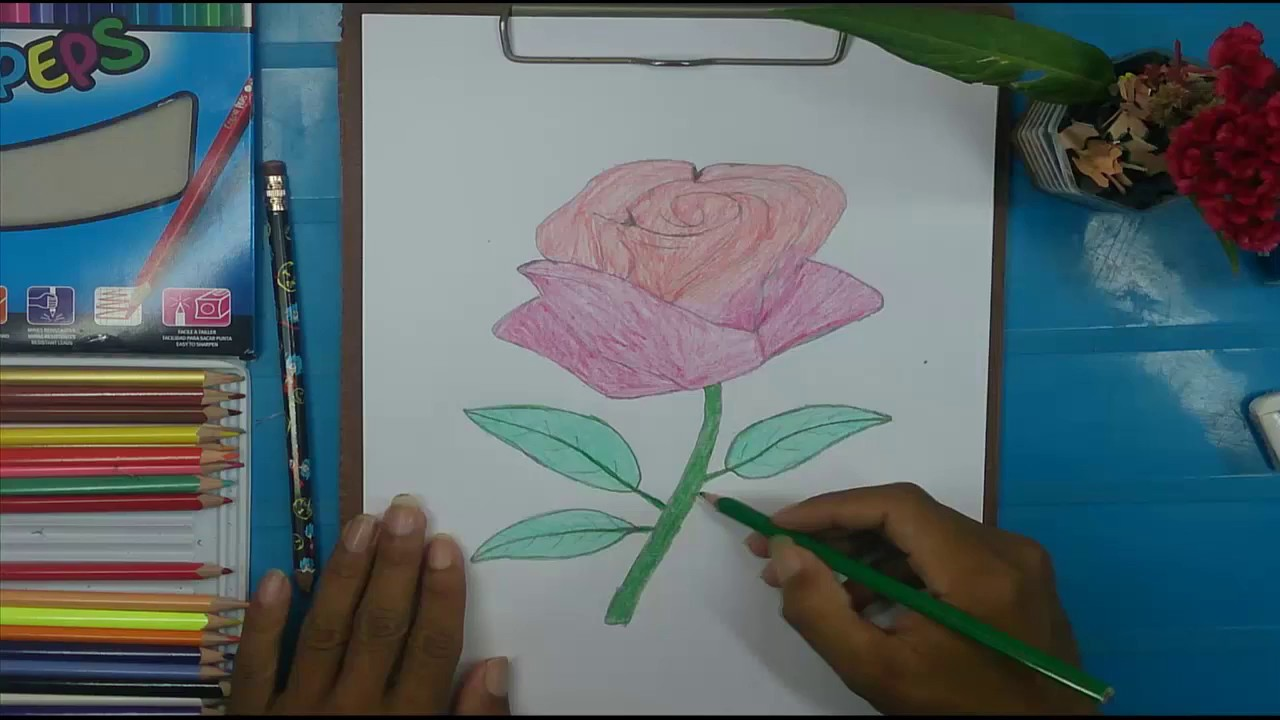how to draw a rose drawing videos for kids very simple drawing