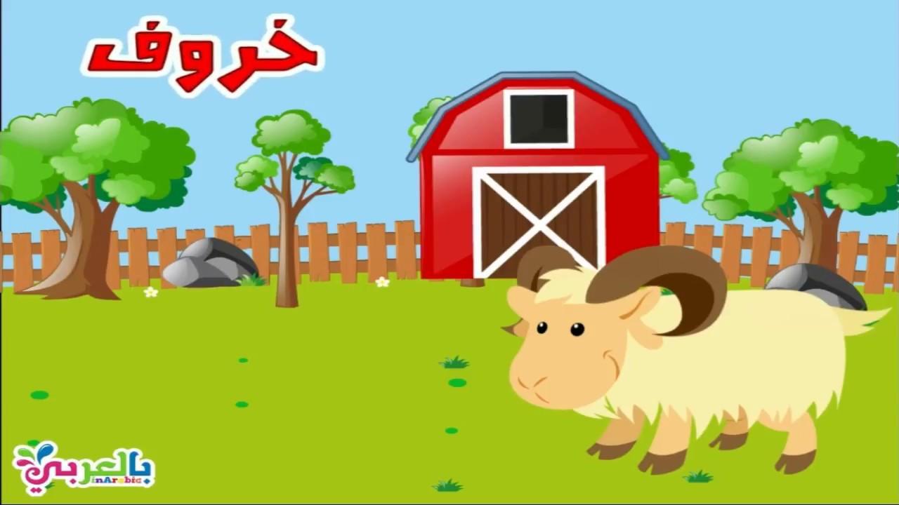 انشطة وحدة الحيوانات لرياض الاطفال اوراق عمل عن الحيوانات للاطفال بالعربي نتعلم