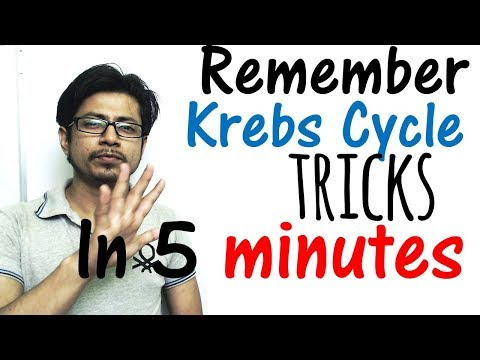 Krebs cycle trick made easy | Remember Krebs cycle in 5 minutes