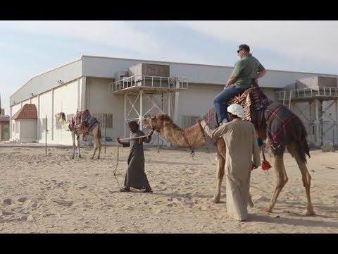 U.S. Soldiers enjoy camel races in Kuwait