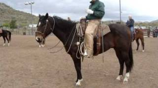 Buck Brannaman: New River, Amazing Demo on Horses and Leads