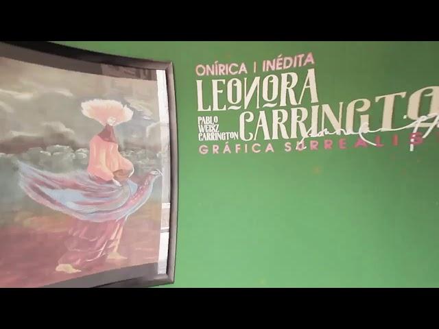 Leonora Carrington - Gobierno de Michoacán