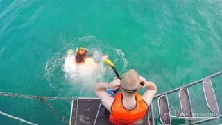 Krabi Spesialisten: Koh Phi Phi Islands Highlights, Krabi, Thailand