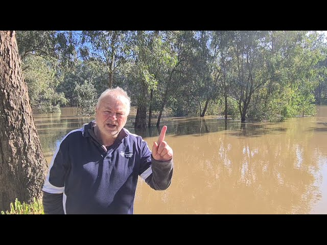 WEEKLY FISHING REPORT UPDATE - 29/07/21 COMPLEAT ANGLER WAGGA.