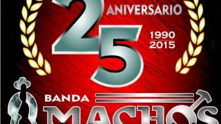 Banda Machos - Que Sera de Mi Vida