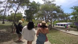 puerto rico part 2 el yunque and luquillo beach using gopro camera