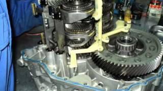 DSG transmission rebuild